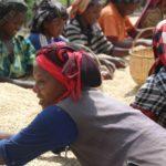 Café Bio LBB Ethiopie Taramesa